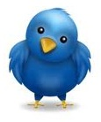 The Twitter Bird of Wisdom
