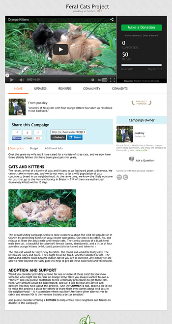 crowdfunding - feral cats project