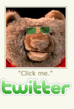 Follow Tame Bear on Twitter