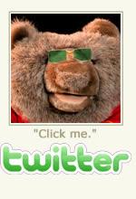 Follow Tame Bear on Twitter